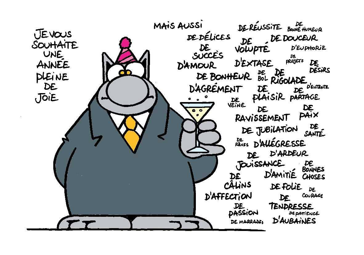 Voeux chat